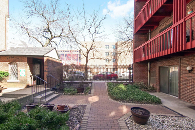 Chicago IL Condo/Townhouse New: $245,000