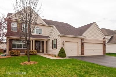 Oswego Single Family Home New: 408 Hackney Lane