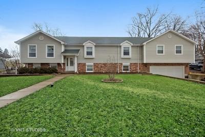 Glen Ellyn Single Family Home For Sale: 1631 Lorraine Road