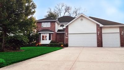 Palos Heights, Palos Hills Single Family Home For Sale: 12520 South Melvina Avenue