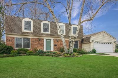 Palatine Single Family Home For Sale: 1067 West Skylark Drive