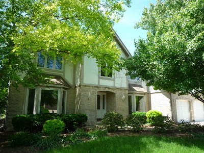 Naperville Single Family Home New: 1036 Sheringham Drive