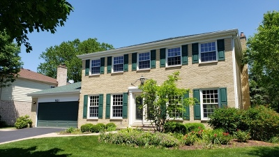 Palatine Single Family Home For Sale: 921 South Carriageway Lane