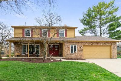 Sugar Grove Single Family Home New: 9 Cedar Gate Circle