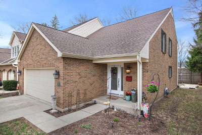 Naperville Condo/Townhouse New: 637 Windham Lane
