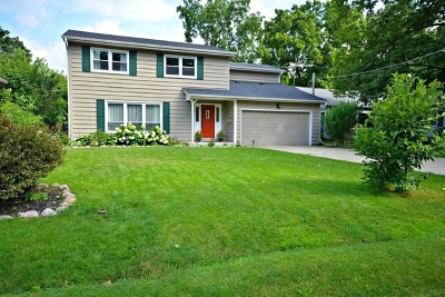 Lake Zurich Single Family Home For Sale: 125 Forest Avenue