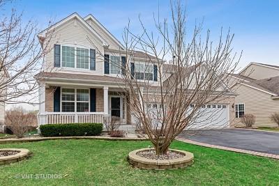 Gilberts Single Family Home For Sale: 159 Charleston Lane