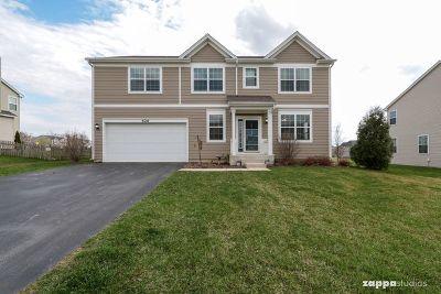 Oswego Single Family Home New: 626 Pimlico Street