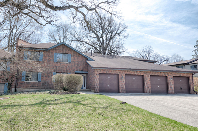 Lisle Condo/Townhouse New: 1897 Portsmouth Drive #D