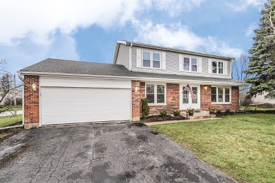 Lake Zurich Single Family Home For Sale: 745 Harvest Drive