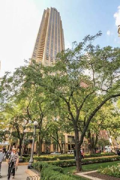 Chicago IL Condo/Townhouse New: $1,699,900