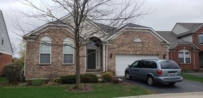 Orland Park Single Family Home Contingent: 9341 Dunmurry Drive