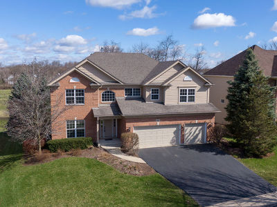 Mc Henry County Single Family Home New: 696 Blackthorn Drive