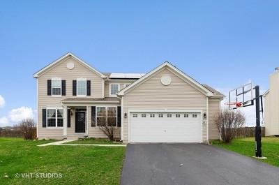 Gilberts Single Family Home For Sale: 231 Reston Lane
