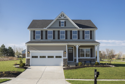 Joliet Single Family Home New: 616 Silver Lake Street