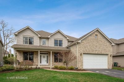 Palatine Single Family Home Contingent: 66 West Aldridge Avenue