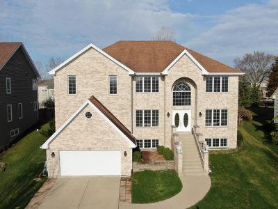 Palatine Single Family Home For Sale: 1262 North Palos Avenue