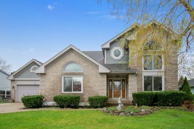 Arlington Heights Single Family Home For Sale: 2381 East Walden Lane