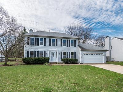 Batavia  Single Family Home For Sale: 630 Ozier Drive