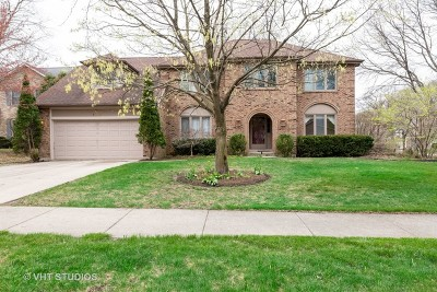 Naperville Single Family Home New: 1129 Dartmoor Court