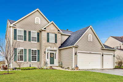 Wauconda Single Family Home For Sale: 1887 Applewood Drive