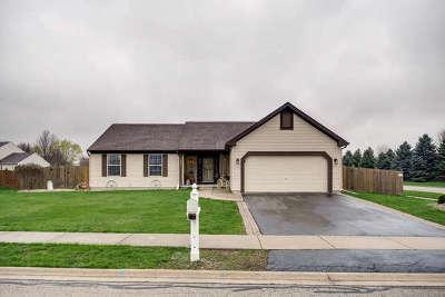 Yorkville Single Family Home New: 1402 Chestnut Lane