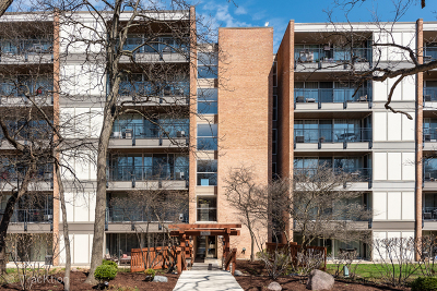 Lisle Condo/Townhouse New: 6010 Oakwood Drive #5C