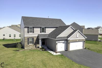 Joliet Single Family Home New: 8105 Flagstone Street