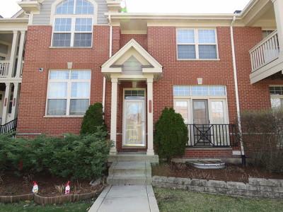 Morton Grove Condo/Townhouse New: 6311 Lincoln Avenue
