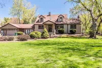 Elk Grove Village Single Family Home For Sale: 1037 Lincoln Lane