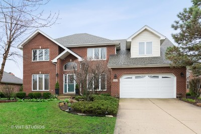 Homer Glen Single Family Home New: 12059 Joan Marie Drive
