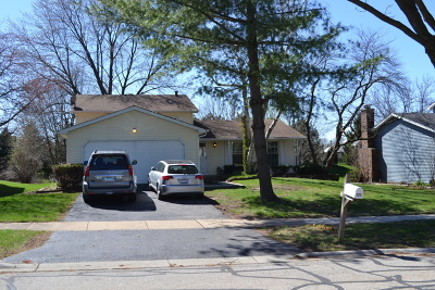 Naperville Rental New: 225 Willoway Drive