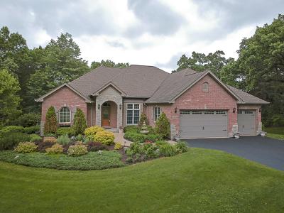 Mc Henry County Single Family Home New: 6210 Chickaloon Drive