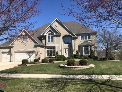 Naperville Single Family Home New: 4520 Clearwater Lane