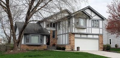 Naperville Single Family Home Contingent: 217 Cortez Court