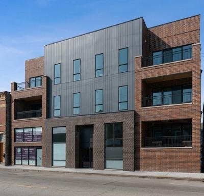 Condo/Townhouse New: 3020 West Belmont Avenue #1NE