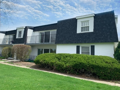Naperville Rental New: 1133 Royal St George Drive #205