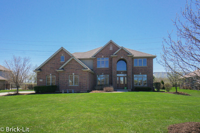 Frankfort IL Single Family Home New: $499,900