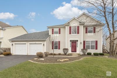 Oswego Single Family Home New: 645 Vista Drive