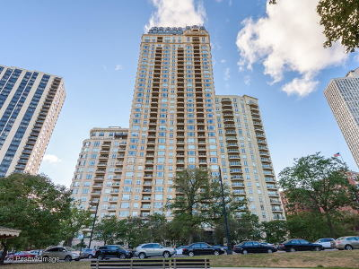 Condo/Townhouse New: 2550 North Lakeview Avenue #N1205