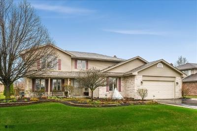 Tinley Park Single Family Home New: 8655 Wyman Drive