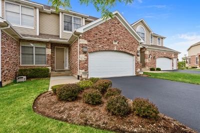 Palatine Condo/Townhouse New: 1274 South Falcon Drive