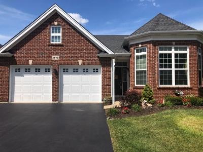 Elgin Single Family Home New: 3872 Kingsmill Drive
