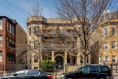Condo/Townhouse New: 842 West Belle Plaine Avenue #1W