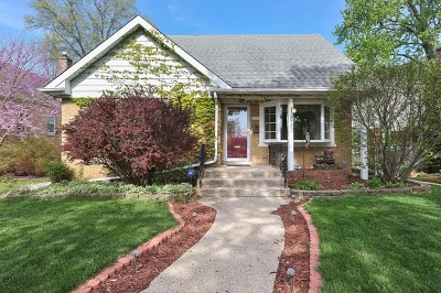 Skokie Single Family Home New: 8246 Kildare Avenue
