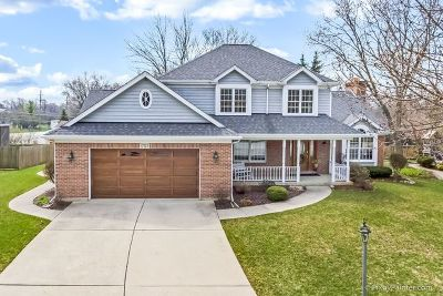 Mount Prospect Single Family Home For Sale: 1703 Frediani Court