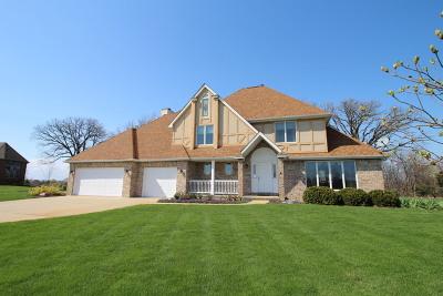 El Paso Single Family Home For Sale: 2846 Saint Andrews Court