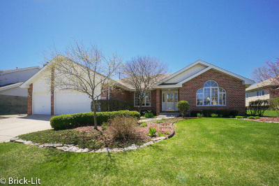 Orland Park Single Family Home New: 17524 Mayher Drive