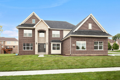 Lemont Single Family Home For Sale: 11210 Como Court