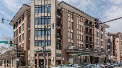 Chicago Condo/Townhouse New: 3450 South Halsted Street #209